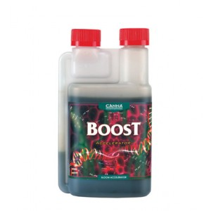 CANNA BOOST ACCEL 250ML